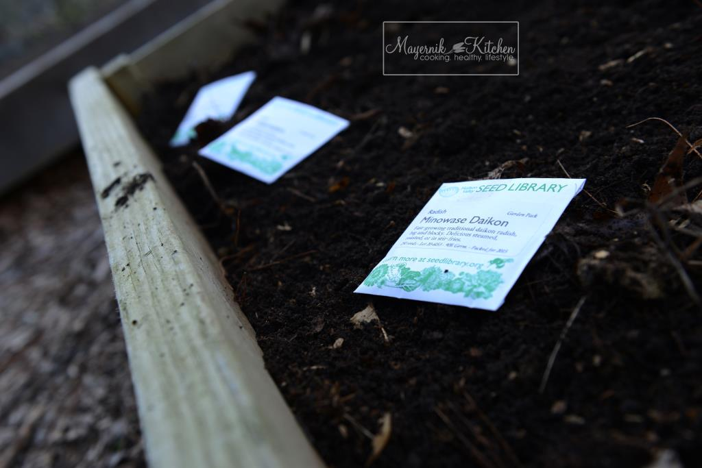 First Planting in Mayernik Garden 2015 - Northern New Jersey