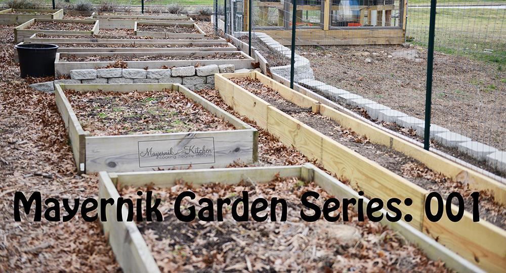 Mayernik Garden 001 - New Jersey Garden