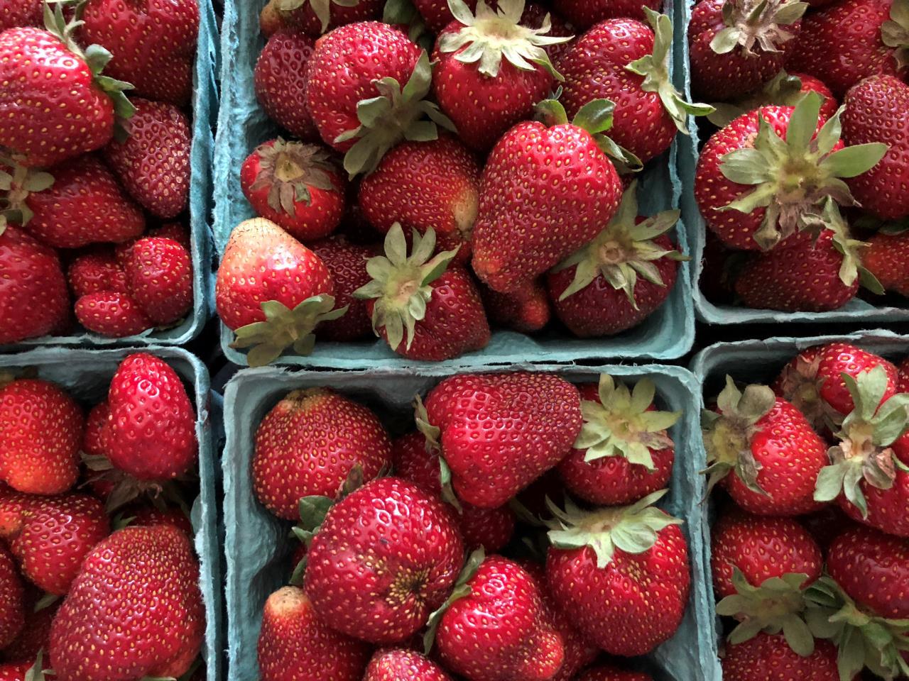 Strawberry Haul 2018 Edition – New Jersey – Mayernik Kitchen