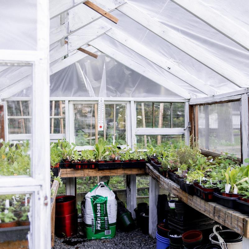 Annual MK Garden Open House