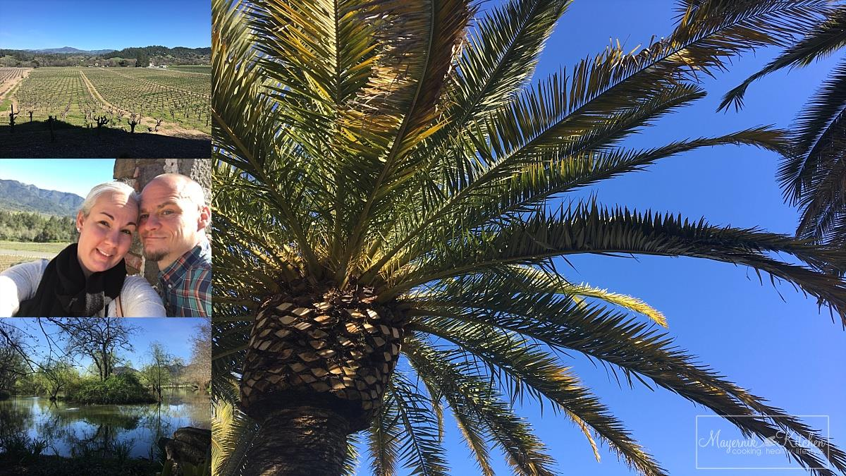 Palm Trees in Napa Valley | Mayernik Kitchen