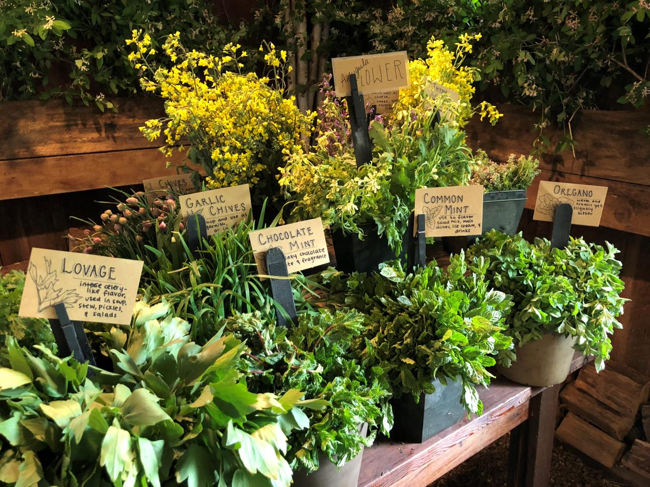 Fresh Herbs at Blooming Hill Farm