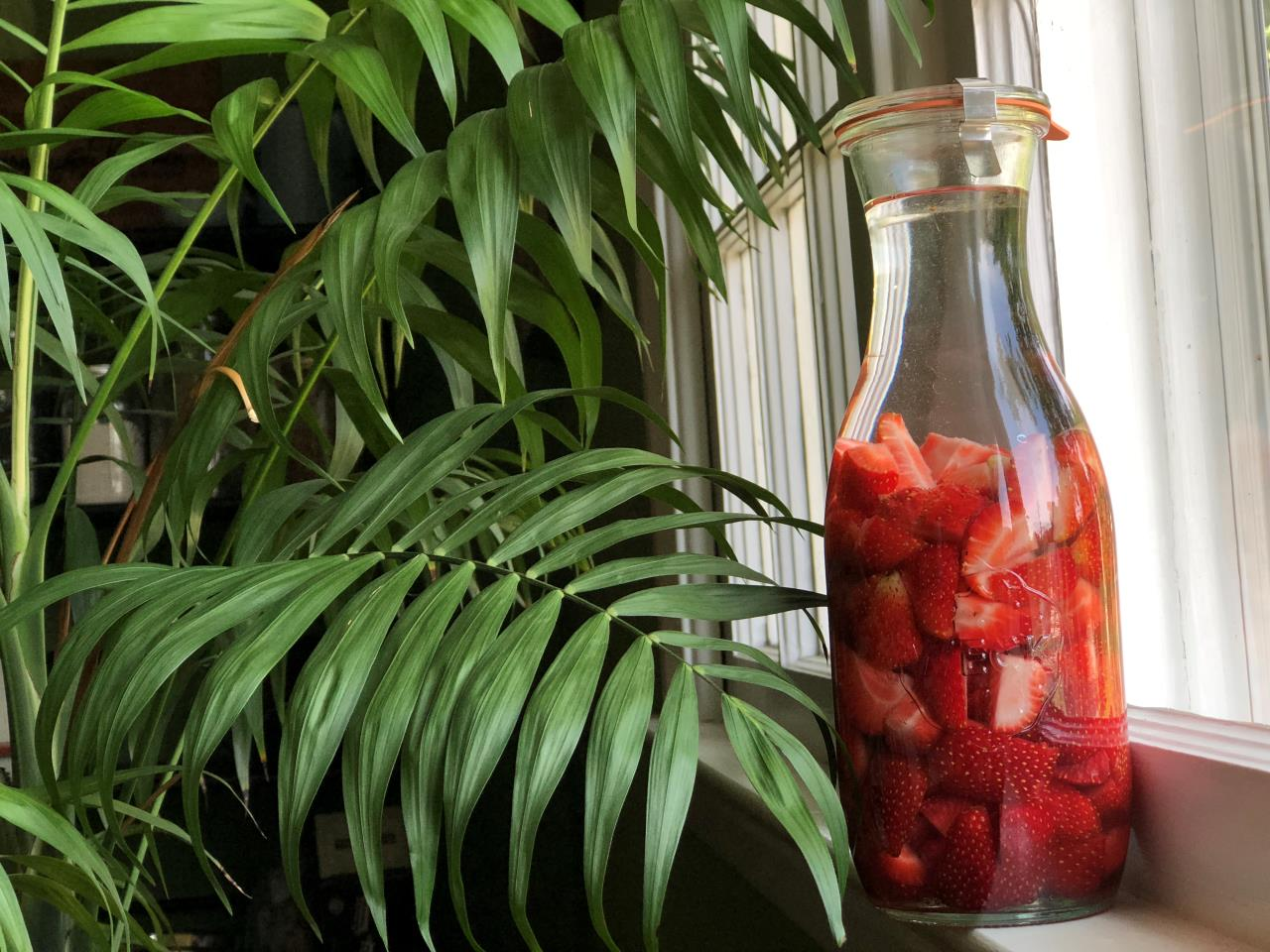 Homemade Strawberry Vodka - New Jersey