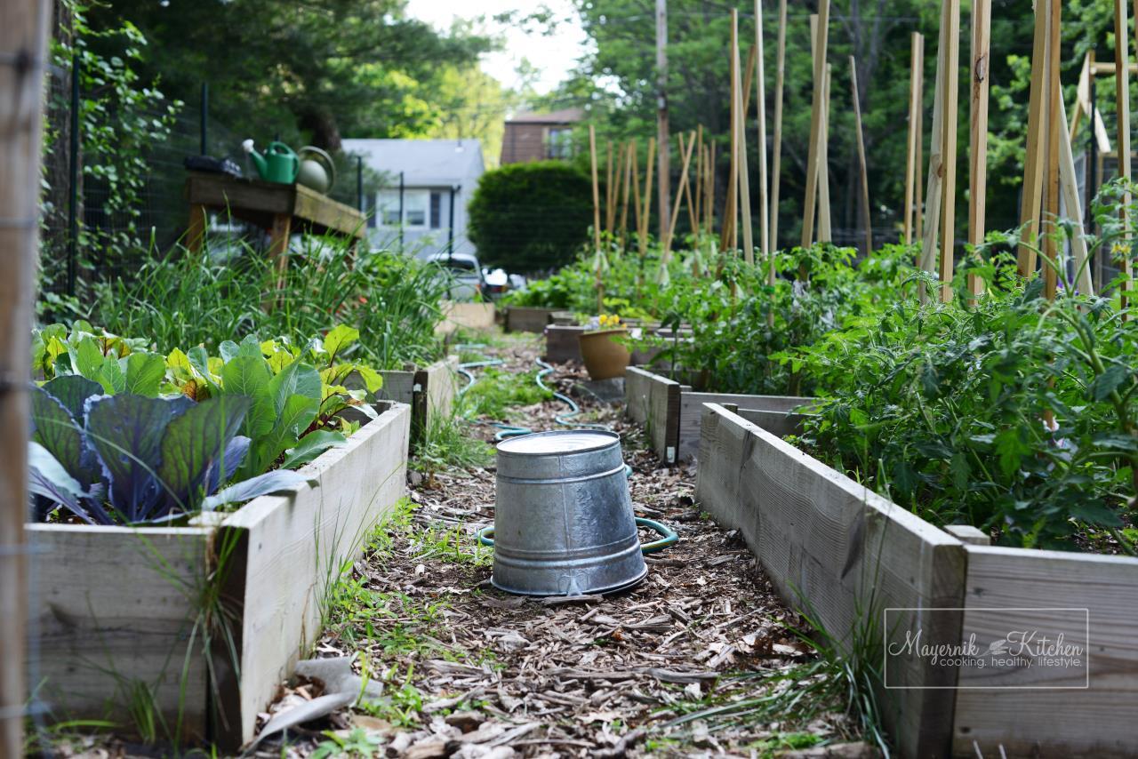 Mayernik Garden - New Jersey Gardens