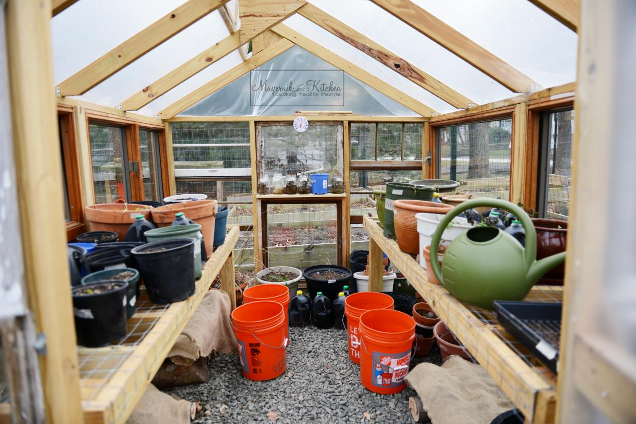 Mayernik Greenhouse - January 2016 - Mayernik Garden 001