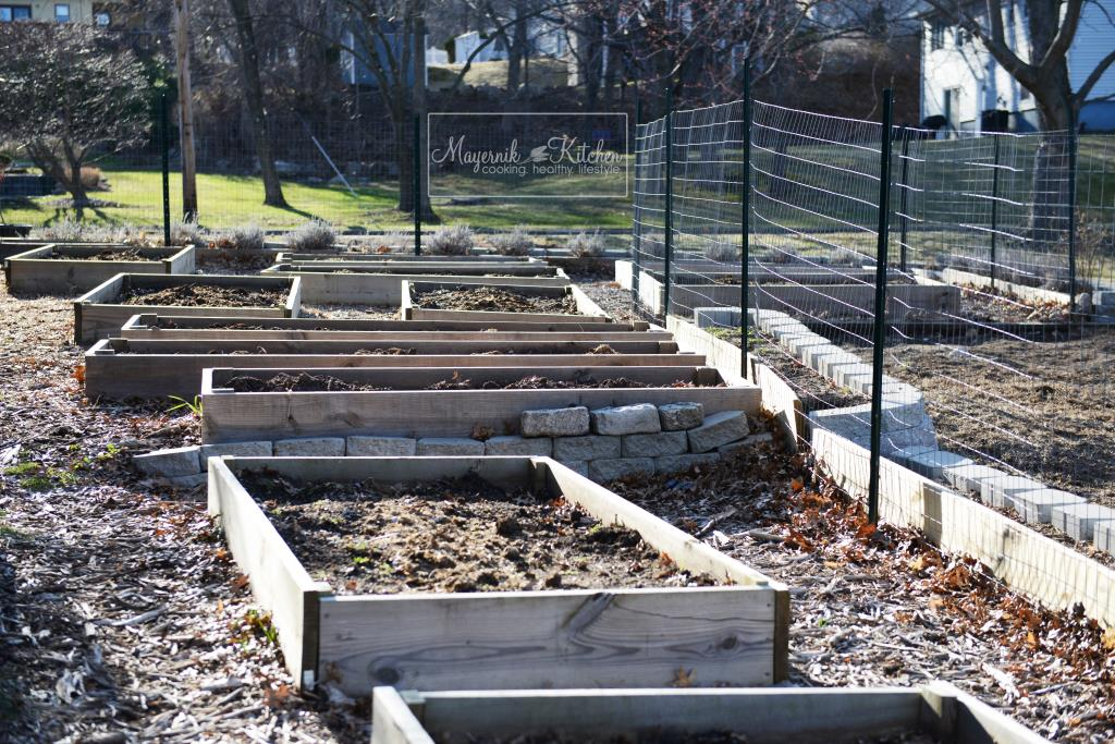 Early Spring Raised Beds - Mayernik Garden