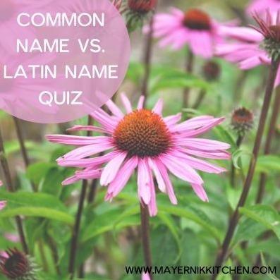 Common Name vs. Latin Name